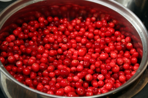 готовим ягоды брусники для варенья