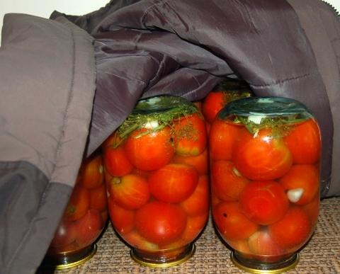 консервация маринованных помидоров на зиму